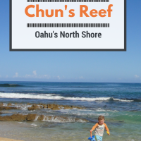 Chun's Reef: Tide Pooling Fun on Oahu's North Shore